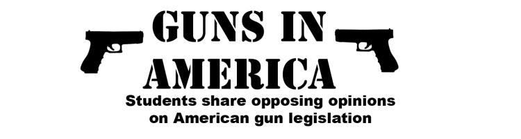 gun viewpoint